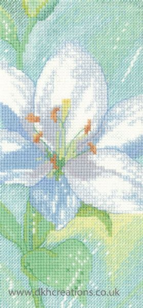 Lily C Cross Stitch Kit